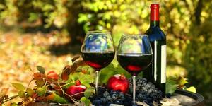 Испанские вина и виноделы.