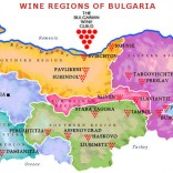 Основные винодельческие регионы